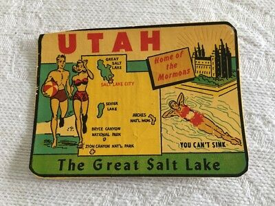 Vintage UTAH Water Decal Great Salt Lake Home of the Mormons Collectible Sticker