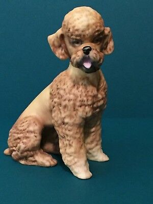 Vintage 1950's Signed Kaiser Brown Colored Bisque Porcelain Poodle. Germany 682