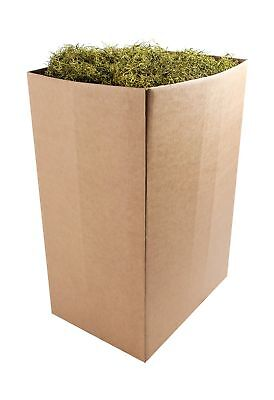 SuperMoss (27031) Spanish Moss Preserved, Basil, 10lbs Appx. 10 lb Bulk Case