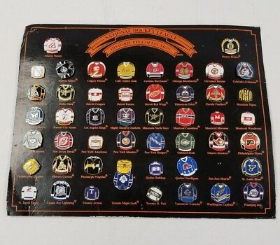 National Hockey League 75th Anniversary Historic Framed Pin Collection 42 Teams
