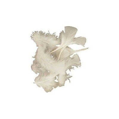 Feathers, size 7-8 cm, white, 500g [HOB-51662]