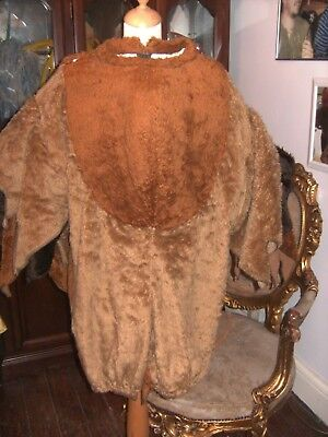 Pantomime Storybook Owl Costume Theatre Stage Show Animal Outfit Am Dram