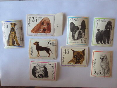 Poland 8x Dog stamps used Airedale, cocker spaniel, poodle, french bulldog,