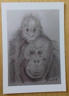 ORANGUTAN & BABY love gift PICTURE A5 print of Original Art Drawing Wild ANIMAL