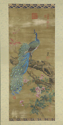 "CHINESE HANGING SCROLL ART Painting ""Peacock""  #E4335"