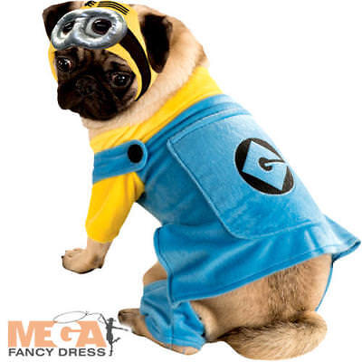 Minion Pet Dog Fancy Dress Halloween Cartoon Despicable Me Puppy Costume Outfit