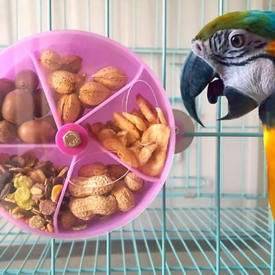 Intelligence Pet Treat Hunt Parrot Bird Cage Chew Feeder Foraging Toys Parrots