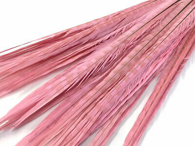 "50 Feathers 20-22"" Light Pink Long Ringneck Pheasant Tail Wholesale Halloween"