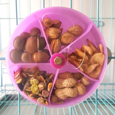 Parrot Pet Bird Toy Wheel Foraging Feeder for Treats Extra Large DFG