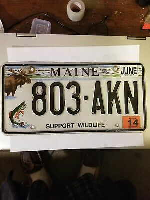 """2014 Maine""""Moose/ Support Wildlife"""" Graphic License  Plate (803-AKN)"""