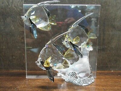 """Swarovski Crystal Society 2007 Wonders Of The Sea """"community"""" Colored Pre-Owned"""
