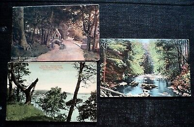 Post Cards : New London, Ct. Cedar Grove, Thames River, Lotimers Mill.