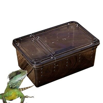 Transparent Plastic Box Insect Reptile Transport Breeding Live Feeding Box 2018