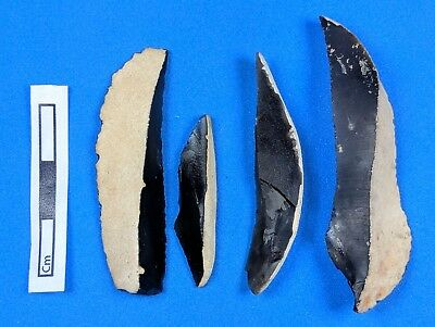 """Transitional Period"" EUP, Curved Backed Blades(L-R-J) c43,500-40,500 years BP"