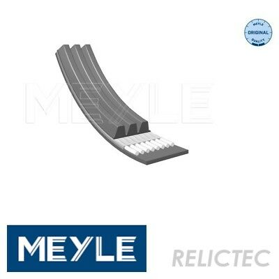 Multi V-Ribbed Belt for Ford Nissan Hyundai:MICRA III 3,ORION III 3,TUCSON