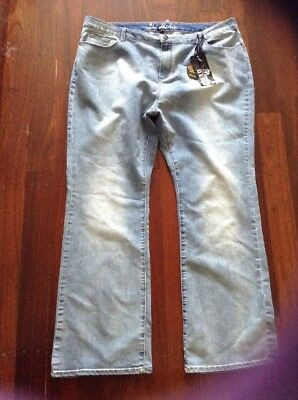 City Chic Jeans 20