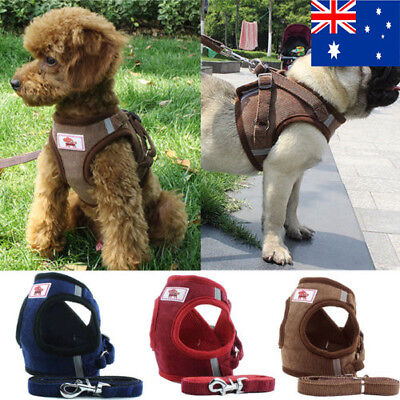Soft Cross Mesh Small Pet Dog Puppy Cat Kitten Harness & Leash Lead Set AU
