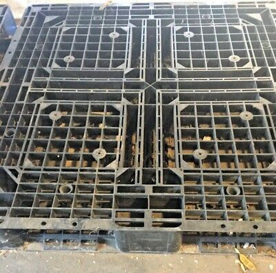 43 x 43 x 6 Used Plastic Pallets (Used)