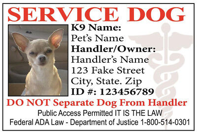 Service Dog  Id Card For Service Animal Professional Ada Rated 0
