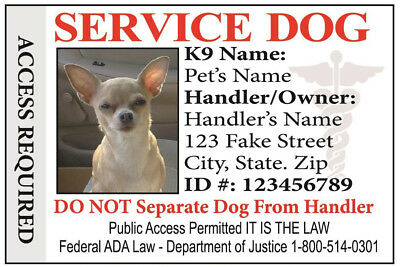 Service Dog  Id Card For Service Animal Professional Ada Rated