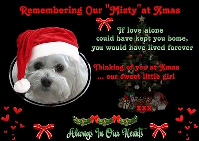 Personalised Xmas Pet Memorial Poster With Photo (Dog Or Cat)