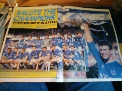 Everton FC Champions Poster A3