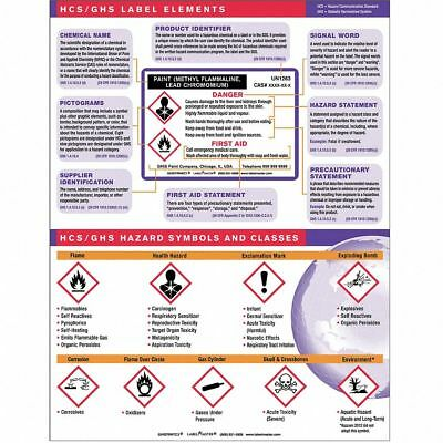 Labelmaster Training Chart, Workplace Safety, English  Includes Training Card