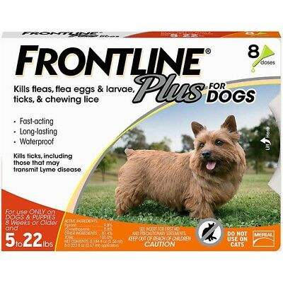 FRONTLINE Plus Flea and Tick Control for 5-22lbs Dogs - 8 Doses