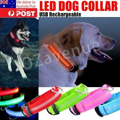 USB Rechargeable LED Pet Dog Collar Flashing Luminous Safety Light Up Multicolor