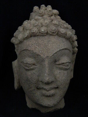 Ancient Stucco Large Size Buddha Head Gandhara/Gandharan 200 AD #STC371