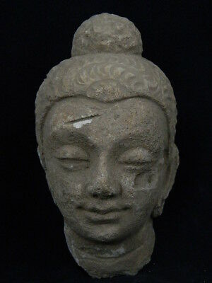 Ancient Stucco Large Size Buddha Head Gandhara/Gandharan 200 AD  #STC5335