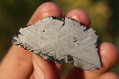 Muonionalusta meteorite etched end cut 34.4 grams!
