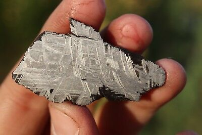Muonionalusta meteorite etched end cut 31.9 grams!