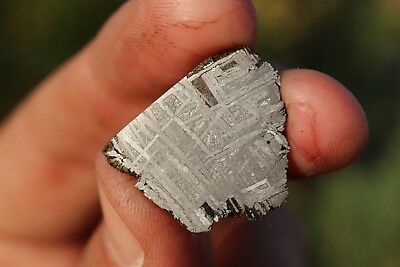 Muonionalusta meteorite etched end cut 10.4 grams!