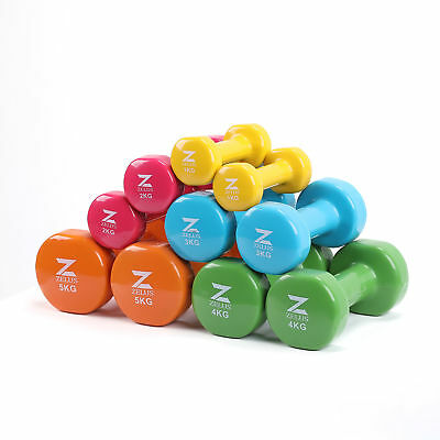 Cast Iron Vinyl Coated Dumbbells Hand Weights for Women/Men Workout Set of 2