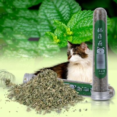 40ml Pet Cat Mint Natural Organic Catnip Pet Appetite Menthol Flavor Cat Treats