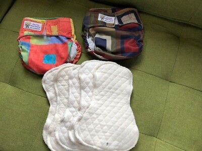 2 Dry Bees Cloth Diapers with inserts size small