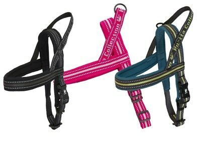 Hurtta Outdoors Padded Dog Harness - Black Cherry & Juniper Available