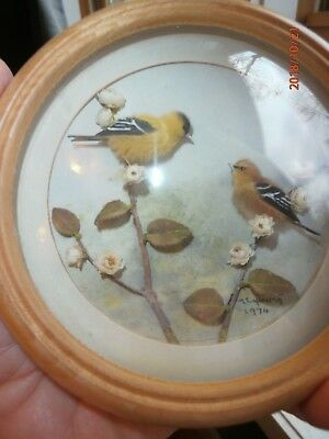H. E. Hervey Nature Study Common Goldfinch and Young 3 Dimensional Bird RMS