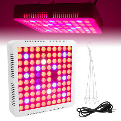 3000W LED Plant Grow Light Full Spectrum Lamp IP65 Indoor Veg Flower Bloom RoHS