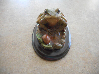 Country Artist Frog, Lovely!