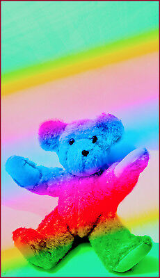 Teddy Bear Rainbow colors,downloadable,get many sizes print on anything you like