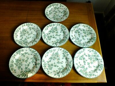 Bhs Country Vine Large Dinner Plates X 7