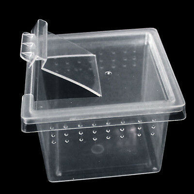 Transparent Plastic Plastic Box Insect Reptile Transport Breeding Feeding. New