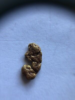 GOLD NUGGET 1.02g