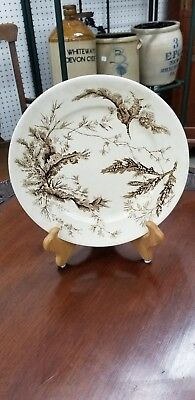 Antique Wedgwood Aesthetic Movement Brown Transferware Seaweed Dinner Plate 1879