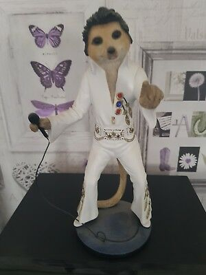 used country artists magnificent meerkat (ELVY)