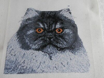 Beautiful Grey Cat Counted cross stitch picture - completed
