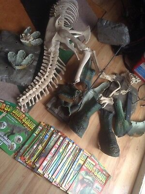 Amazing Dinosaur Discovery T-Rex & Full Magazine Collection Excellent Condition