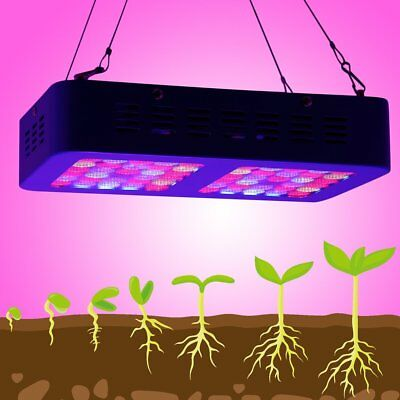 300W LED Grow Light Spectrum Plant Growth Lamp Greenhouse Hydroponics System FR